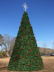 Singing Christmas Tree 2019.Christmas Tree Lighting In Byrd Park Snow Hill Business